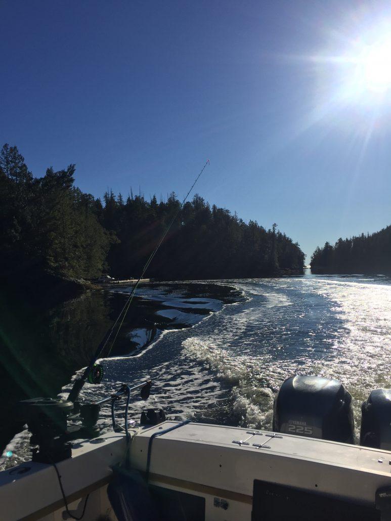 Sun, Fish, Ocean - Eagle Nook Fishing Lodge