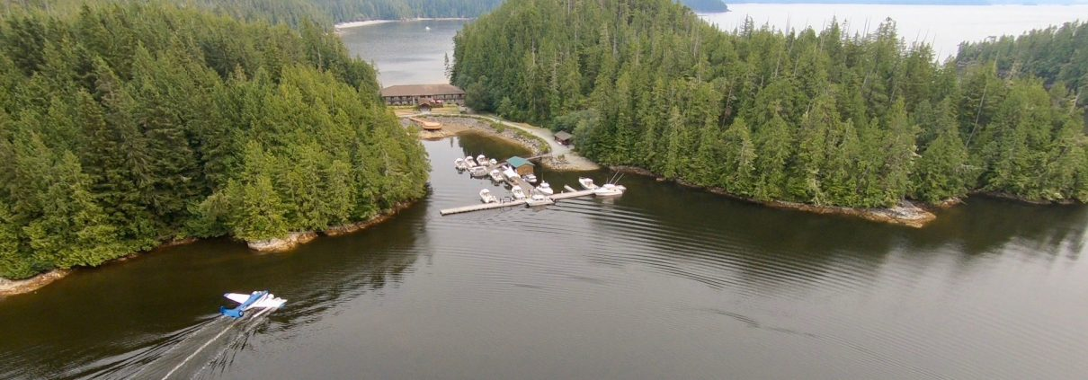 2019 Salmon & Halibut Fishing Season - Eagle Nook Resort
