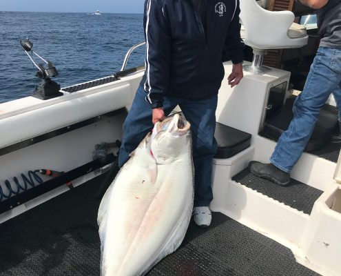 halibut fishing season in BC